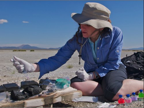 NASA astrobiology fellow Felisa Wolfe-Simon processing mud from Mono Lake in California to inoculate media to grow microbes on arsenic